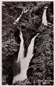 Stock Ghyll Falls Ambleside - Real Photo