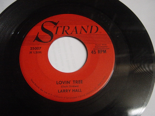 Larry Hall - Sandy / Lovin Tree - Strand 25007 Mint Minus