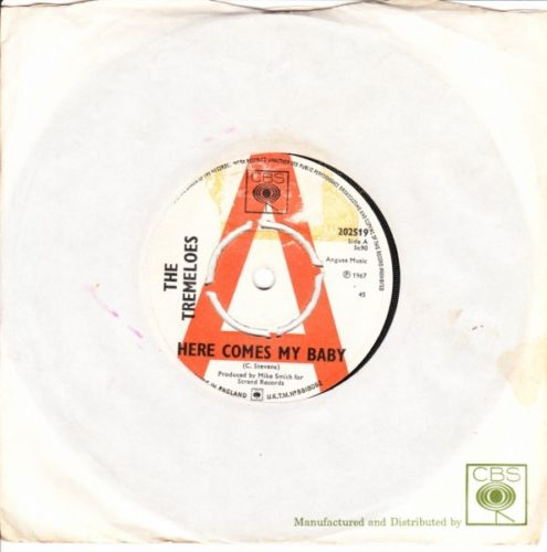 The Tremeloes - Here comes my Baby - CBS Demo 2877