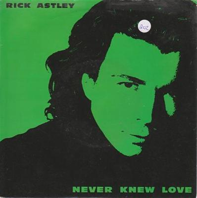 RICK ASTLEY - NEVER KNEW LOVE { 202