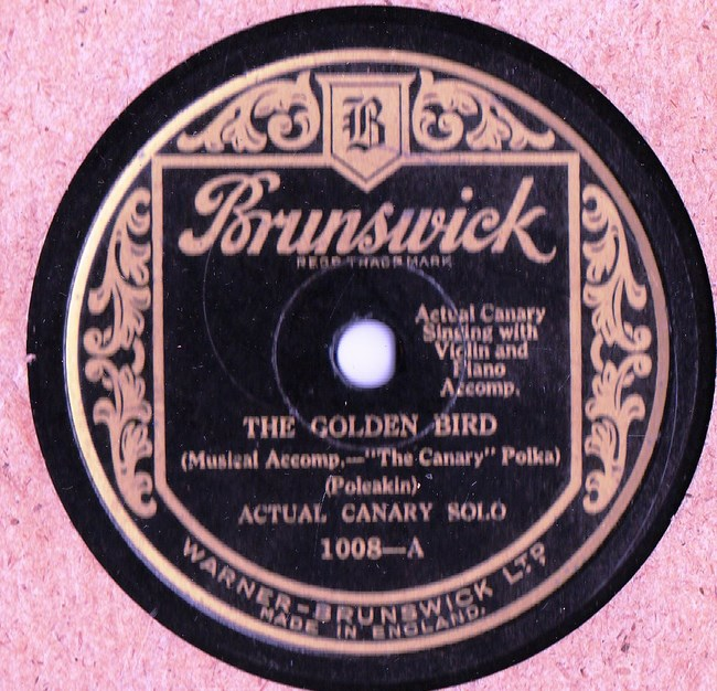 Actual Canary Solo - The Golden Bird - Brunswick 1008